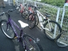 大活躍のバイクたち